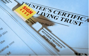 Estate Planning Audit Review